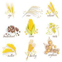 Céréales Icon Set vecteur