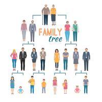 Illustration de l'arbre généalogique vecteur