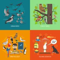 concept d'oiseau 2x2 images vecteur