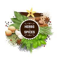 Illustration de sertie d'herbes et d'épices vecteur