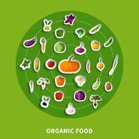 Icônes de papier décoratif des aliments biologiques vecteur