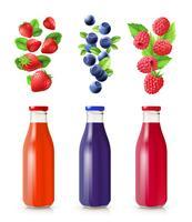 Berry Juice Set réaliste vecteur