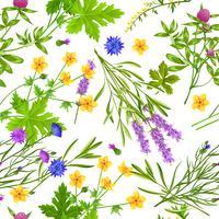 Modèle sans couture d'herbes et de fleurs sauvages vecteur