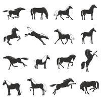 Cheval Races Silhoettes Noir Icons Set
