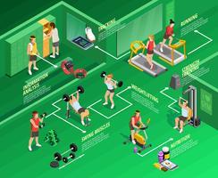 Infographie isométrique de gym vecteur