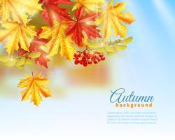 Fond d'automne plat vecteur