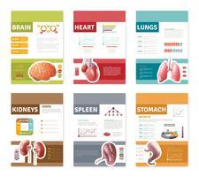 Bannières d'organes humains internes vecteur