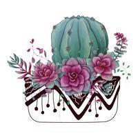 Carte avec ensemble de cactus et de plantes succulentes. Plantes du désert. vecteur