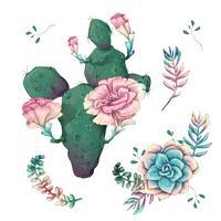 Succulentes. Cactus dessinés à la main sur un fond blanc. Fleurs dans le désert. Succulentes de dessin vectoriel