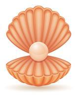 coquille avec illustration vectorielle perle vecteur