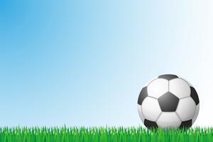 illustration vectorielle de football herbe champ