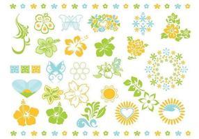 Pack vectoriel fleur d'été