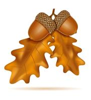 glands de chêne automne avec feuilles vector illustration