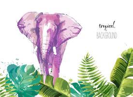 Fond avec des feuilles tropicales et éléphant. vecteur