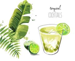 Cocktail. Fond de cocktail tropical de l'été avec des feuilles de palmier.