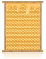 peigne à miel dans l'illustration vectorielle cadre vecteur