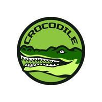 logo de l'équipe de crocodile d'alligator vecteur