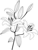 Bouquet de fleurs. Cadre floral. Carte de voeux s'épanouir. Décor d'été