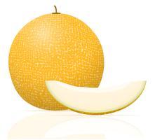 illustration vectorielle juteux melon mûr vecteur