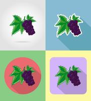 fruits de cassis plats icônes définies avec l'illustration vectorielle ombre
