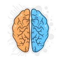 Main, dessiné, cerveau humain, hémisphères, illustration