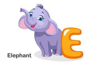 E pour éléphant vecteur