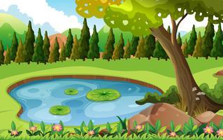 Scène avec étang dans le champ vecteur