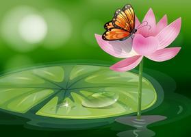 Un papillon au sommet d'une fleur rose