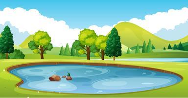 Scène avec étang dans le champ