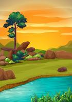 Scène avec rivière au coucher du soleil