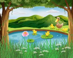 Scène avec étang et montagne vecteur