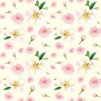 Modèle sans couture de fleur de cerisier