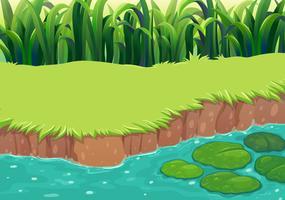 Une image d'un étang vecteur