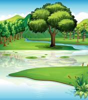 Terre et ressources en eau