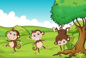 Les trois singes vecteur