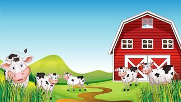 Ferme laitière vecteur
