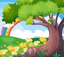 Un arc-en-ciel dans le ciel et les belles fleurs vecteur