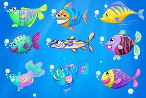Neuf poissons colorés sous la mer vecteur