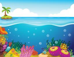 palmier et corail vecteur
