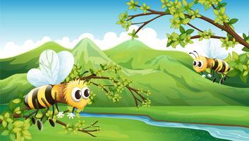 Les deux abeilles volantes