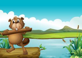 Un castor au-dessus d'un tronc flottant tenant un morceau de bois vecteur