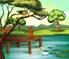 Scène d'étang