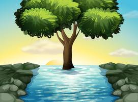 Un grand arbre au milieu de la rivière vecteur
