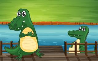 Crocodiles dans le pont