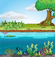 Environnement terrestre et aquatique vecteur