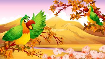 Perroquets dans un décor d'automne