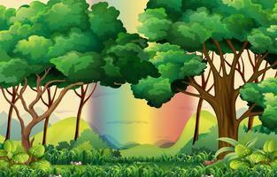 Forêt vecteur