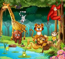 Animaux et forêt vecteur
