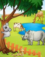 divers animaux vecteur
