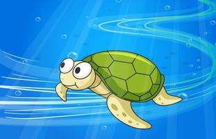 tortue sous l'eau